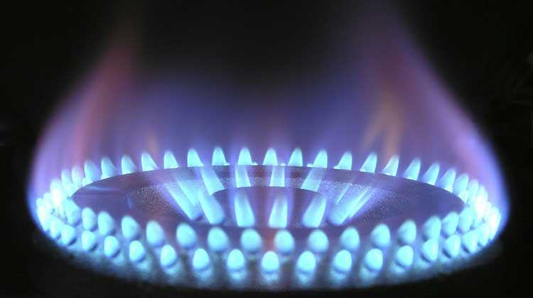 Природный газ или сжиженный? Не экологичный, но довольно дешевый уголь, биотопливо: дрова, пеллеты или брикеты?